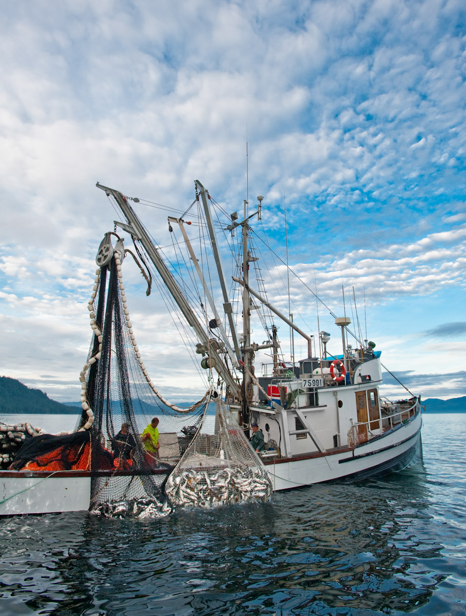 Alaska commercial fishing