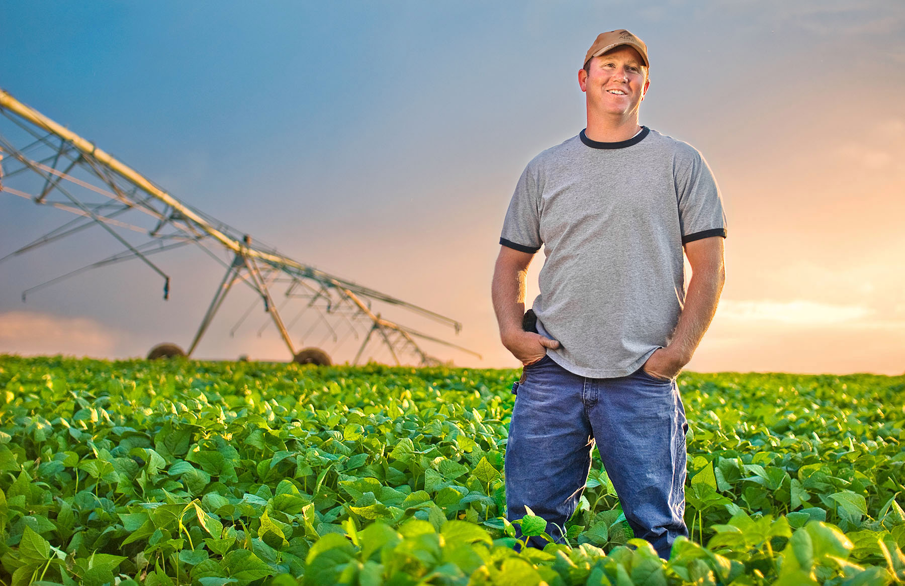 Farmer standing in a field of soybeans
