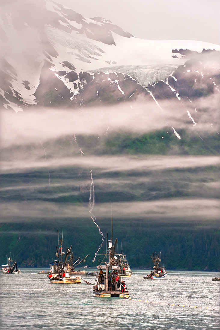 Valdez Alaska Commercial salmon fishing